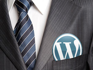 wordpress-profesional