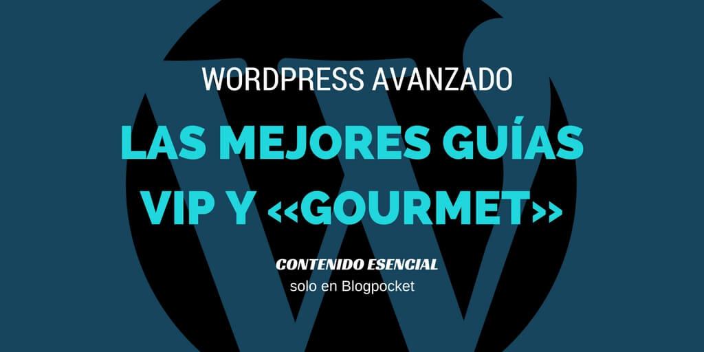 Guías avanzadas de WordPress para crear una web en 2017