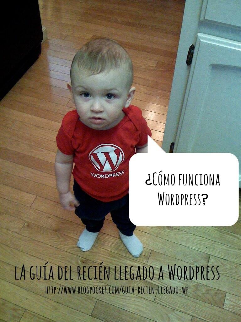 como-funciona-wordpress Vislumbrando el futuro de WordPress